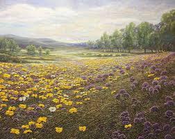 Herb Meadow | Artbay Gallery