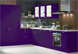 kitchen appliances lime green kitchenware pink kitchen accessories uk purple kitchens design ideas from purple