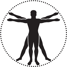 Jpg Freeuse Annual Protocol Check Up - Anatomy Icon Clipart - Large Size  Png Image - PikPng