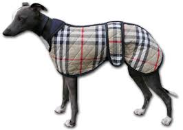 reversible quilted whippet coat tartan side