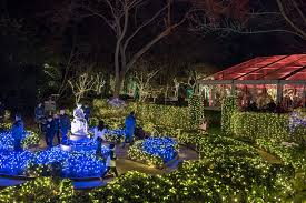 bayou bend collection and gardens has been decorated with 100 000 dazzling lights for village at