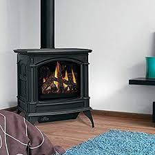 napoleon gas stove.  Gas Napoleon Knightsbridge GDS60 Cast Iron Gas Stove With Direct Vent To