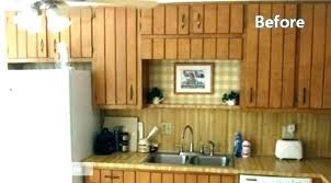 changing kitchen cabinet doors beautiful replacement can
