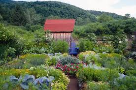 Kitchen Garden Book Consult Rosalind Creasy Before Planting A Kitchen Garden La At