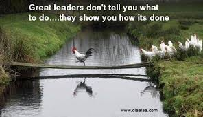 Funny Leadership Quotes Beauteous Funny Leadership Quote Quote Number 48 Picture Quotes