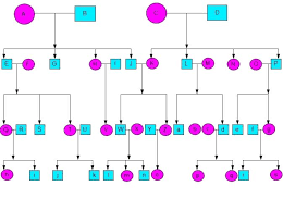 Build A Family Tree In Excel Family Tree Excel Template Family Medical Tree Template Format And