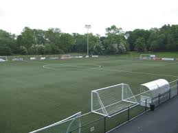 technical surfaces maintains the fifa 2 pitch for tns fc