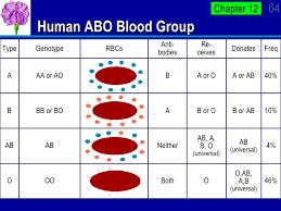 Blood Types Chart Jasonkellyphoto Co