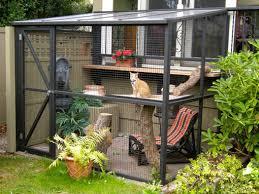 about catios cat enclosures