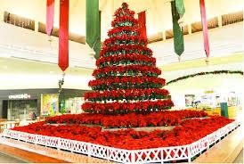 Christmas Tree Made Of Poinsettias At Kahala Mall  Hawaii ReporterChristmas Tree Hawaii