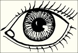 Small Picture Human Eyes Coloring Pages For Preschoolers Color Zini