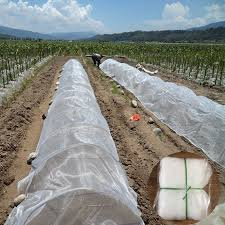 detail feedback questions about 14 20mesh width 1m 2m 3m garden pest control netting plants vegetable fruit protection cover anti bird insect pe nylon net
