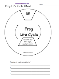 Preschool Handwriting Printables   TeacherLingo also Free Printable Life Cycle Frog   Social Studies and Science as well  furthermore Color the Life Cycle  Frog   Worksheet   Education together with  additionally KidZone Bat Activities moreover Life Cycle of a Frog   Science for Kids   The K8 School likewise  together with  additionally  also Frog Life Cycle and Growth Teaching Resources   SparkleBox. on frog labeling worksheet kindergarten