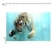 tiger shower curtain rainbow tiger shower curtain tiger shower curtain