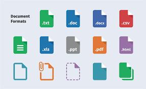 Document Translation Agency