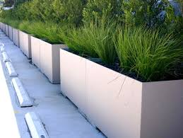 concrete planter bo in rectangular shape has white colors finishing completed with green grass