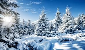 Bildergebnis für Winterbild ski