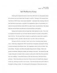 essay introduction writer scholarship essay introduction examples anant study com scholarship essay introduction examples anant study com