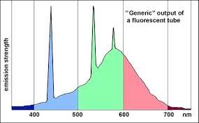 Fluorescent Light Color Spectrum Chart Fluorescent Light Spectrum Aviated Info