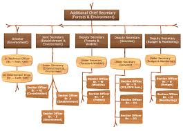 Organization Structure Forest And Environment Department