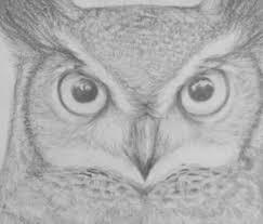 Disegni Facili A Matita Incredibile Guida Semplificata E Disegnare