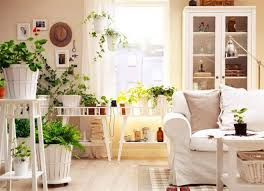 plants feng shui home layout plants. The Ancient Chinese Philosophy Of Feng Shui Uses Plants To Create Harmony Within Home Layout N