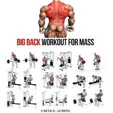 Back Workout Chart Step By Step Big Back Workout Step By Step Tutorial Big Back Workout