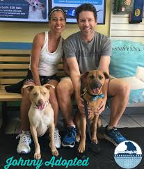 "Barrio Dogs, Inc. on Twitter: ""Johnny wants everybody 2 meet his wonderful  4ever home. Thank u Ivy Blair & Adela Prinz 4 welcoming him into ur home… """