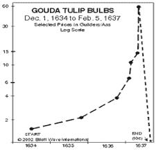 Tulip Mania Chart Image Result For Tulip Price Chart Tulip Bulbs Tulips