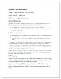 College Research Essay Examples Research Papers Samples College