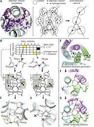 De Novo Enzyme Design Using Rosetta3 De Novo Design Of Protein Homo Oligomers With Modular