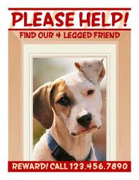 Lost Pet Flyer Maker Missing Poster Template peellandfmtk 3