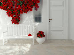 white front door14 Front Door Color Ideas and Their Meanings  Procom Blog