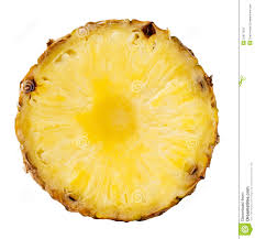 pineapple slice png. royalty-free stock photo. download pineapple slice png