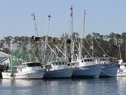 Shrimp Boat Fleet In Mobile Bay At Mobile Alabama Sweet