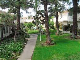 Pine Terrace Apartments Whittier see pics & AVAIL