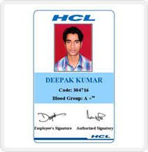 Fox Brains Have Come Up With Excellently Developed Id Card That Find