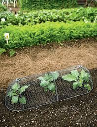 <b>100pcs</b>/<b>lot Nursery pot plastic nursery</b> box garden container grow ...