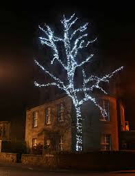 white tree lights