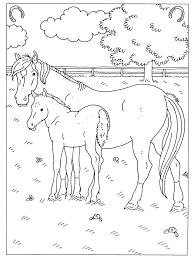 Kleurplaten Paarden En Veulens Kleurplaat Vor Kinderen 2019 With