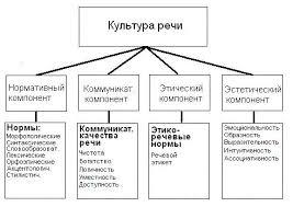 Реферат Культура речи и эффективность общения Рис 1 Основные компоненты культуры речи