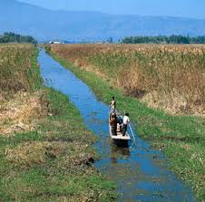 facts culture history economy geography com boatman on a canal south of logtak lake near imphal manipur