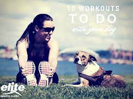 10 workouts to do with your dog elite