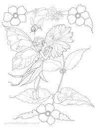 Small Picture flower fairies coloring page Coloring pages Pinterest Flower