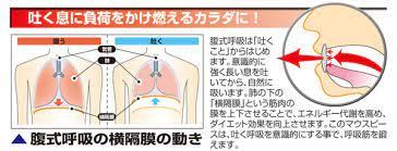 横隔膜 を 鍛える