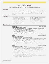 Law Enforcement Professional Resume Examples Inspirational Sample