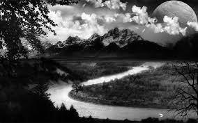 74+] Black And White Nature Wallpaper ...