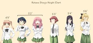 I Made A Height Chart Based On Their Canon Katawashoujo