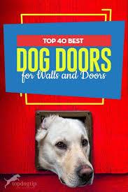 40 best dog door brands 2020 reviews