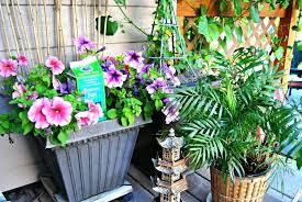 epsom salt in the garden home and garden uses for salt by readers digest epsom salt garden cheats